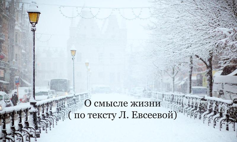 О смысле жизни ( по тексту Л.Евсеевой)